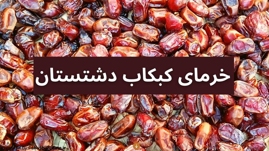 خرمای کبکاب دشتستان ( بوشهر)